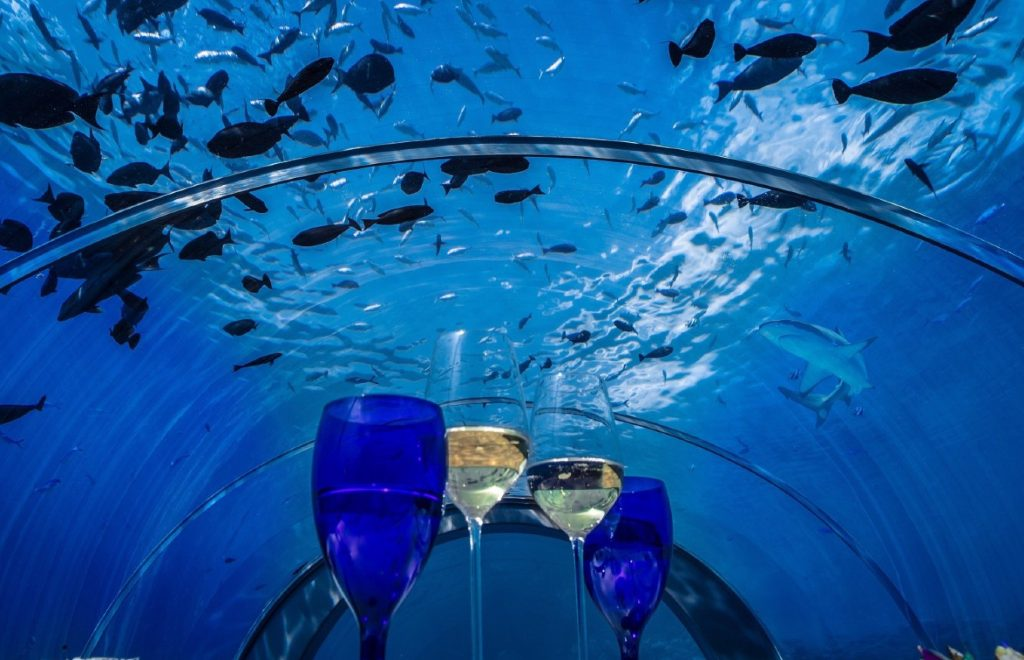 Inspire Your Senses Inside The Ithaa Undersea Restaurant