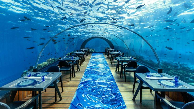 Inspire Your Senses Inside The Ithaa Undersea Restaurant